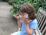 jasminebutterflies